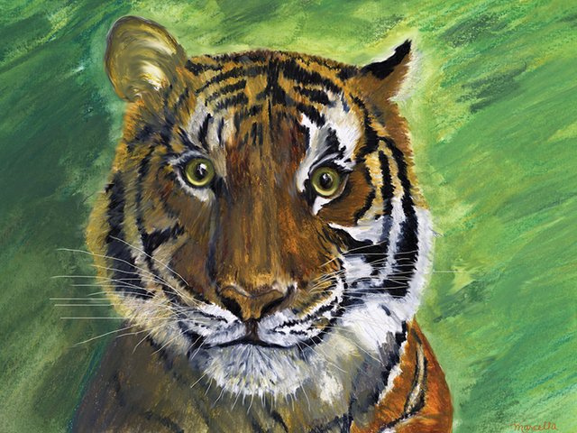 tigerfinal signed scaled small.jpg