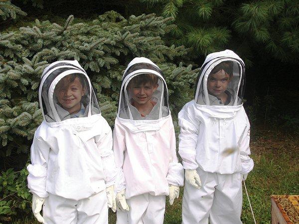 Copy of iacona bees.jpg