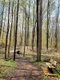 Plum Creek Park.jpg
