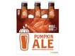 Pumpkin6packRendering