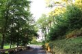 20 driveway.jpg