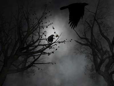 Crows Creepy
