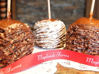 Candy Apple_Mapleside Farms