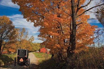 Holmes county Fall amish