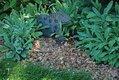 Home-and-Garden-06-(for-eco-garden-article)-Photo-Credit,-Melinda-Myers,-LLC.jpg