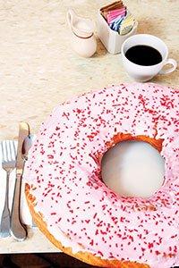 giant_donut_059rgb.jpg