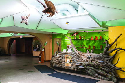 View of the visitors center lobby, 2012 (Summit Metro Parks).jpg