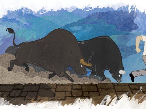 Gamut: bulls jan15