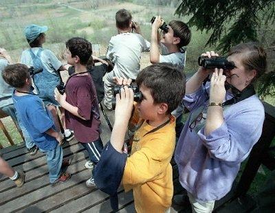 kids-bird-watchingjpg-3855b9667d6d0497.jpg