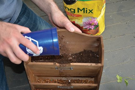 potting soil.jpg