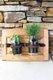 two plant jars.jpg