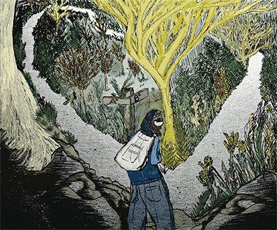 gamut illustration jan15 frost woods.jpg