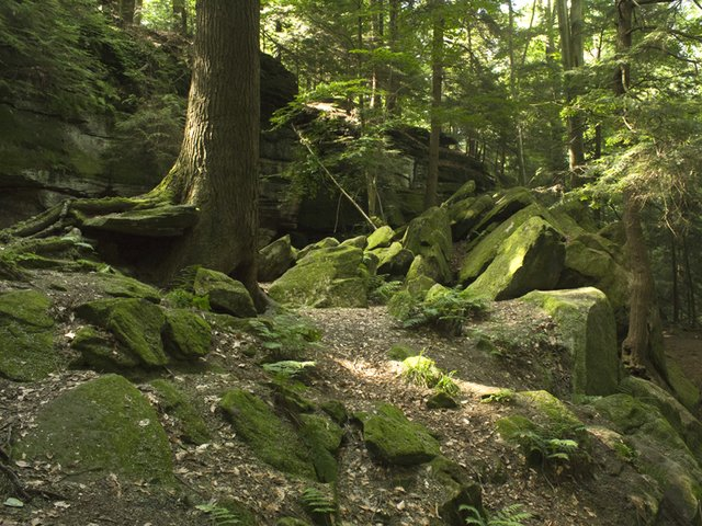 ledges at virginia kendall