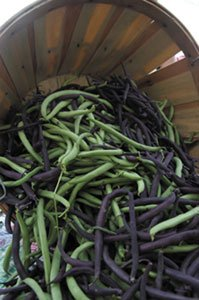beans-in-a-basket.jpg