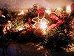 Quail Hollow - Christmas at the Hollow1.jpg