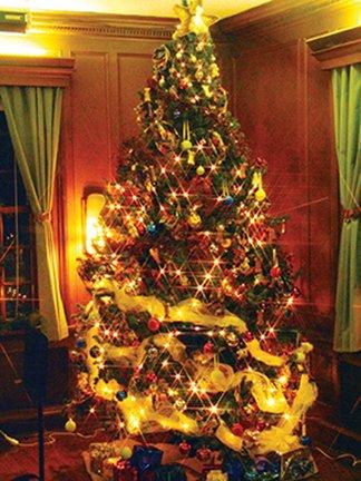Quail Hollow - Christmas at the Hollow3.jpg