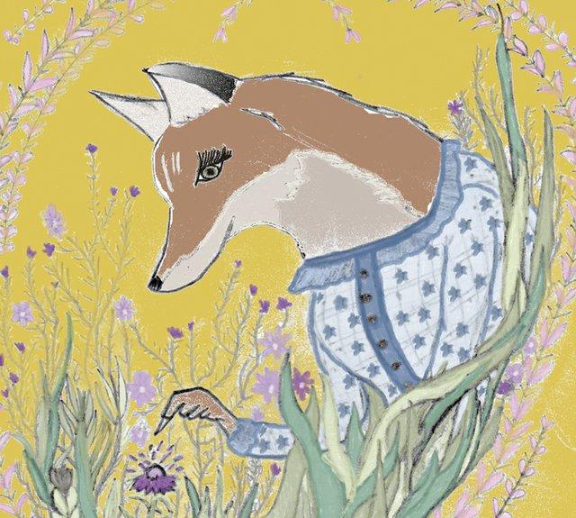 gamut fox