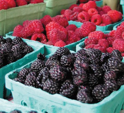 rasp-berries-farm-mkt.jpg