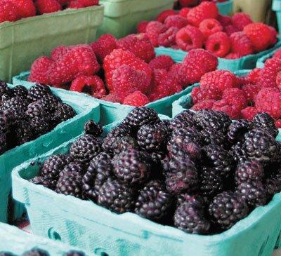 rasp-berries-farm-mkt.jpg
