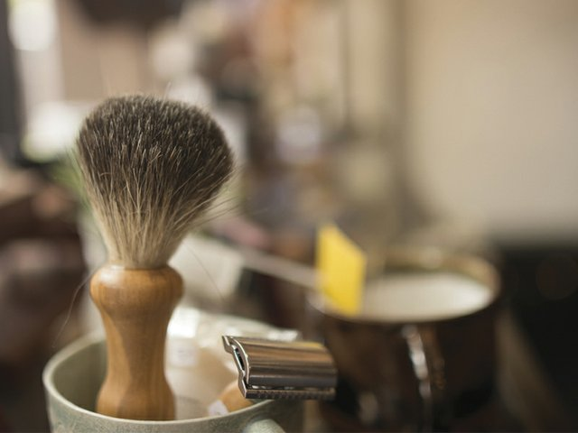 Brush and razor Jun 17 Grooming.jpg