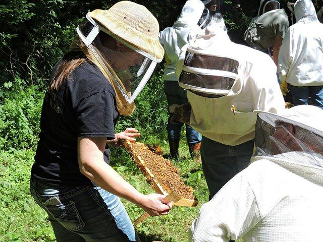 8-5 Gardening Gurus Is Beekeeping For You.jpg