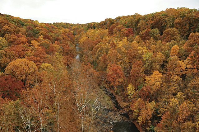 10-25 Fall Foliage Hike - (Photo Credit to J J Prekop Jr).JPG