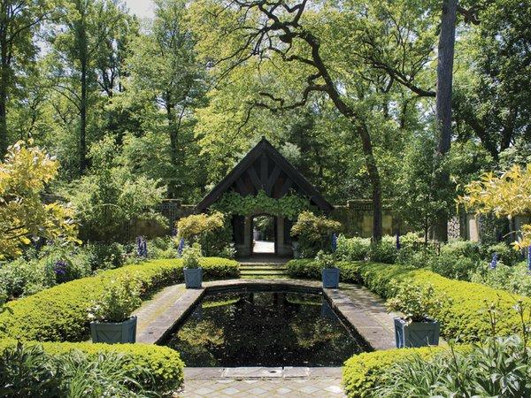 Garden Jul17.jpg