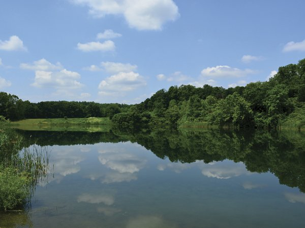 Lake Jul17.jpg