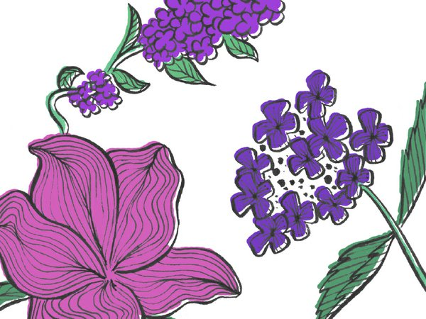 flores flowers 2.jpg