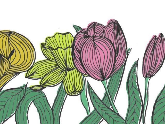 flores flowers 3.jpg
