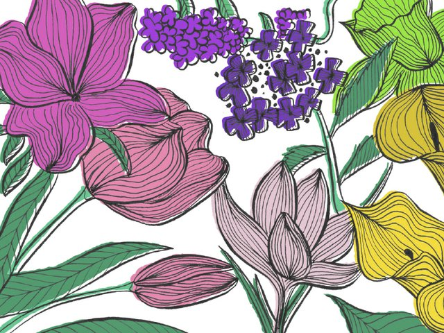 flores flowers.jpg