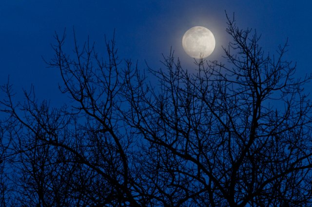 12-3 Supermoon Hike (Photo Credit to Kevin Lanterman).jpg