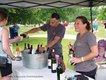 7-14, 7-15 Music in the Valley Folk & Wine Festival.jpg
