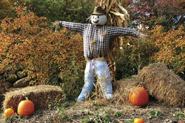 9-30 Scarecrow-Building Workshop (Photo Credit to Joe Prekop).jpg