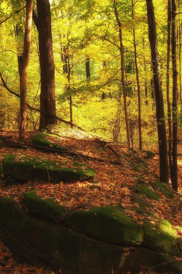 9-22 Fall Equinox Hike1 - Metroparks.jpg