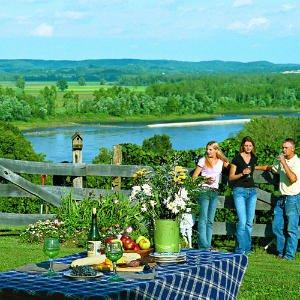 outdoor-wine-tasting.jpg