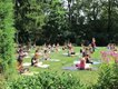 10-1 Sunday Serenity with Yoga on the West Terrace.jpg
