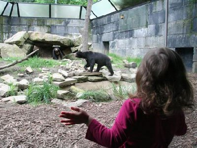 Akron Zoo